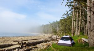 These 15 Rustic Spots In Washington Are Extraordinary For Camping