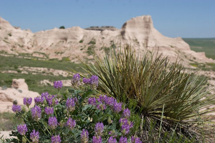 10. Pawnee National Grasslands