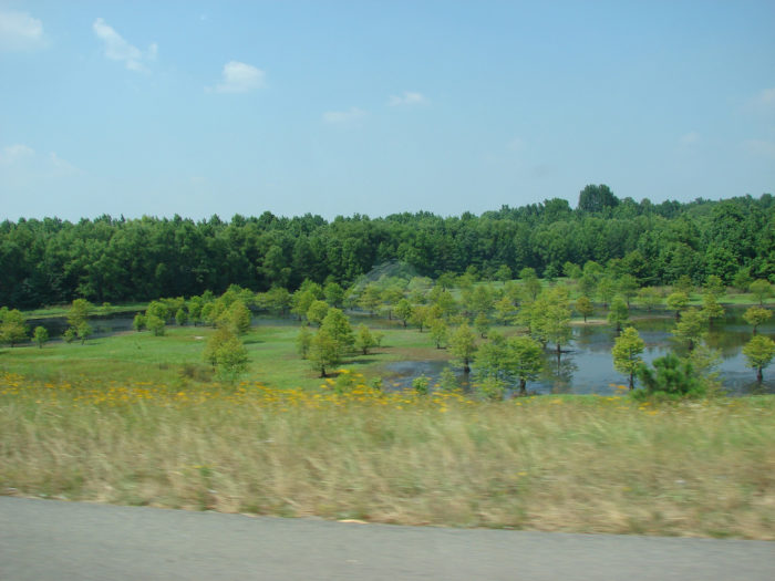 7. Interstate 530 Scenic Byway