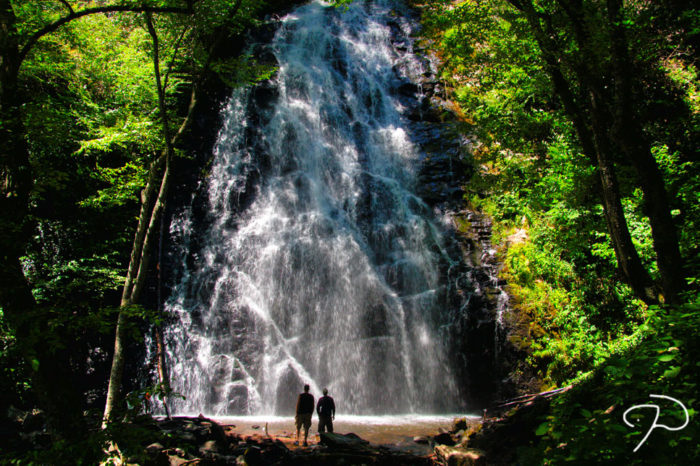 11. You already have a long list of waterfalls you want to visit and hiking trails you must take.