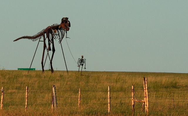 11. The best preserved T Rex skeleton was found in South Dakota.