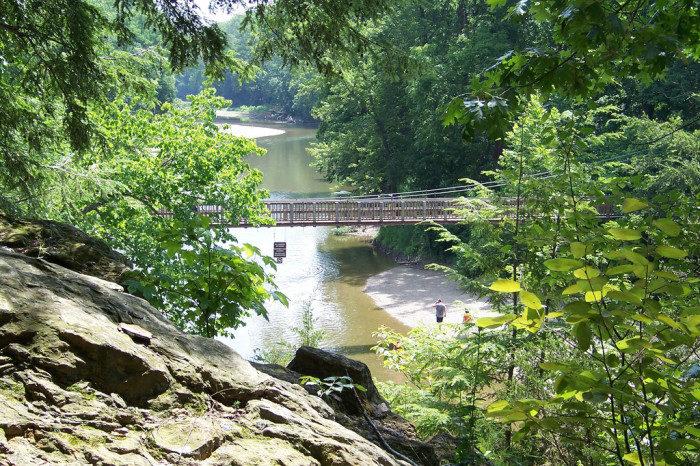 Indiana: Turkey Run State Park, Trail 8