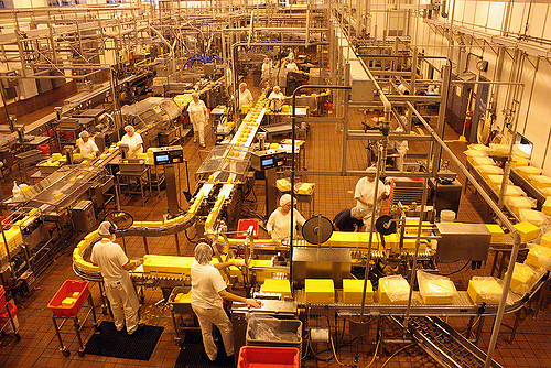 8. It is actually illegal to fall asleep in a cheese factory in the state of South Dakota.