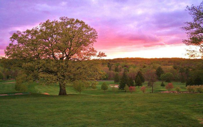 1. Grassy Hill Country Club (Orange)