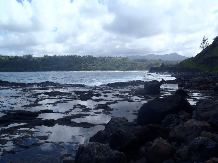 4. Mokolea Lava Pools