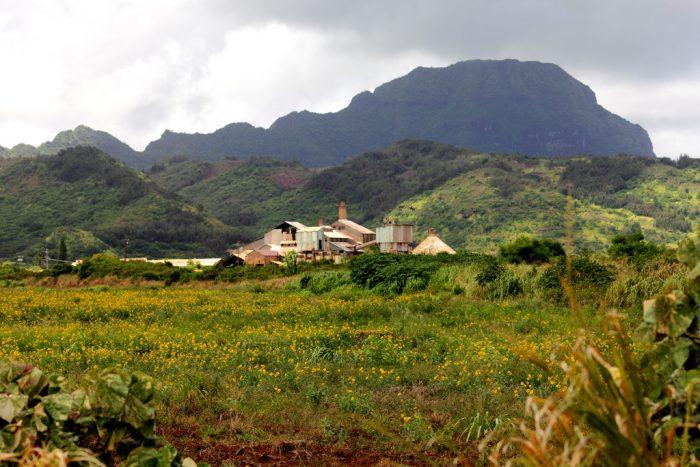 4. Old Sugar Mill of Koloa