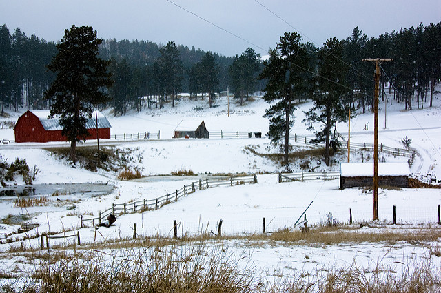 9. This snow covered farm in the middle of the forest.