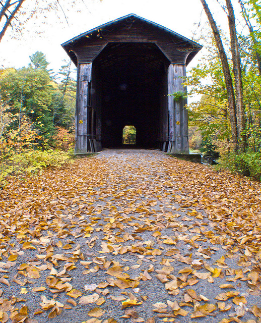 3. And which easy rail trail paths are perfect for when you need a quiet walk.