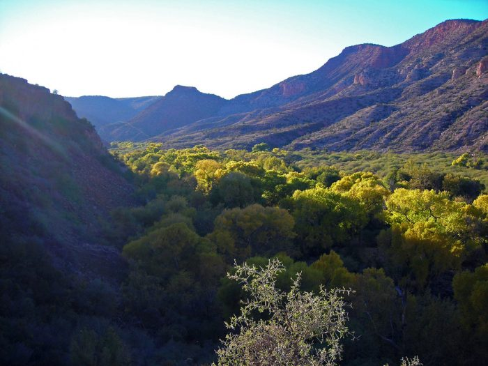 12. Sycamore Canyon