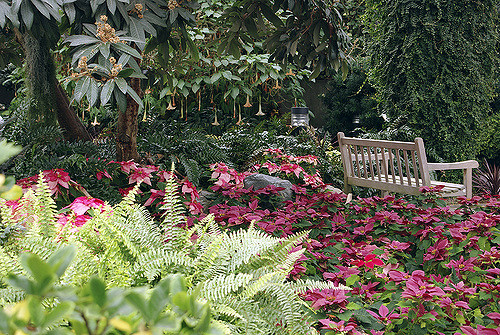 6. Foellinger-Freimann Botanical Conservatory - Fort Wayne
