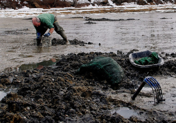 10. Don't forget clamming!