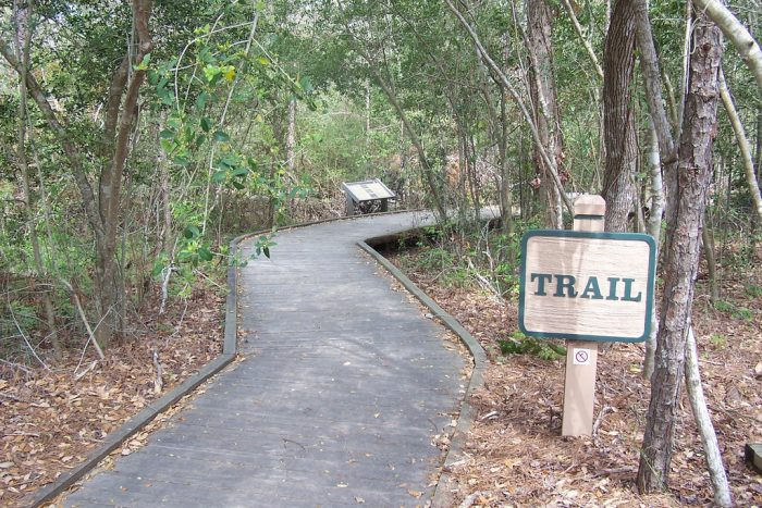 3. Kirby Nature Trail (Big Thicket National Preserve)