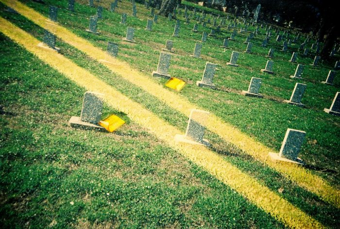 1. Driving through the perfectly dotted Texas Memorial Cemetery will give you the chills.