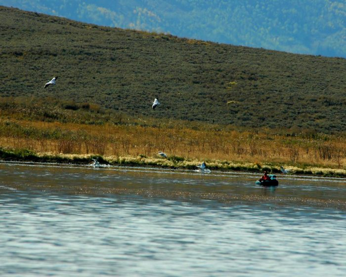 16 amazing spots in utah to go fishing for Strawberry reservoir fishing