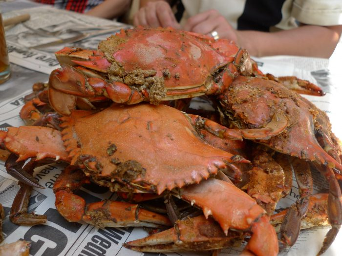 1. Have a steamed crab feast (or several).