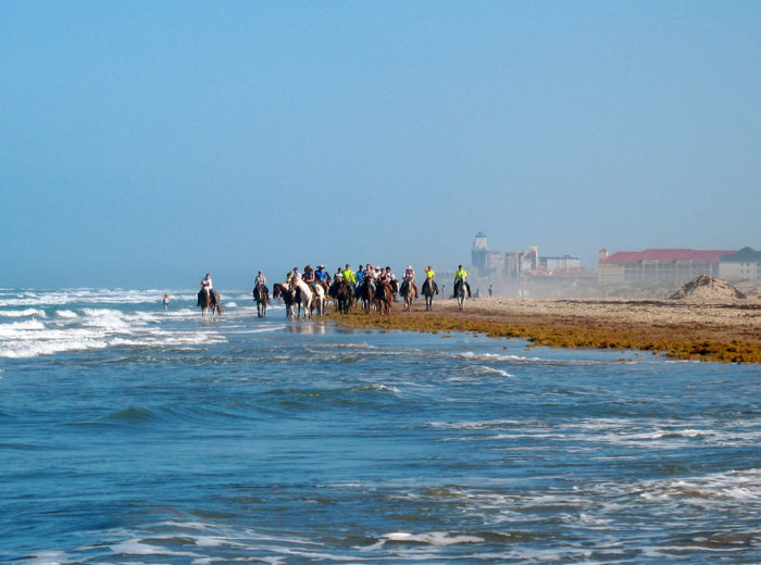 1. Go for a horseback ride at South Padre Island beach.