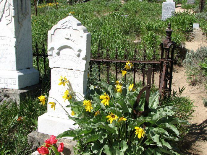 4. Silver City Cemetery, Silver City