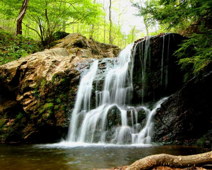 10. Natural wonders abound throughout the state.