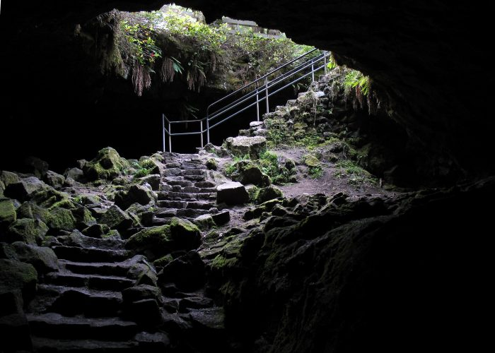 The Ape Caves In Washington State