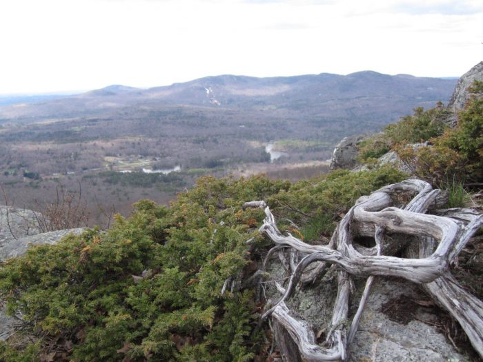 11. After a challenging hike, such as to the top of Mount Megunticook.