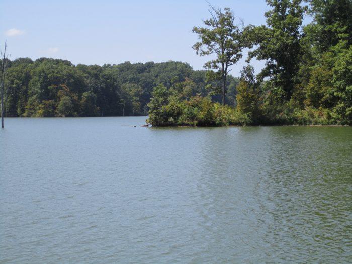 10.Lake Austell, Village Creek State Park (near Smith Township)