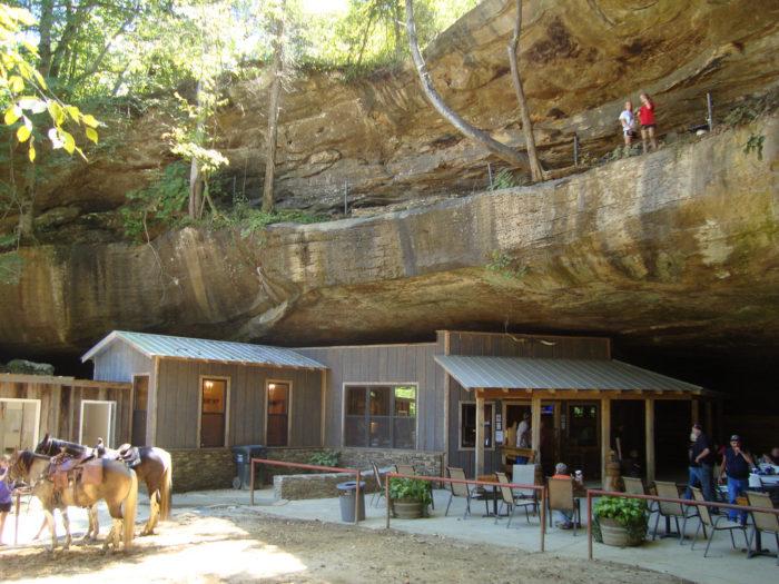 Top  Restaurants In Tuscaloosa