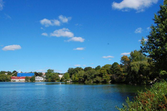 5. Spy Pond, Arlington