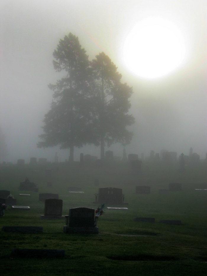 5. Snyder Cemetery, Butler