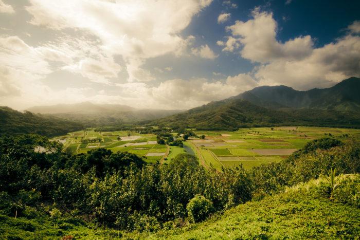 5. Hanalei Valley Lookout