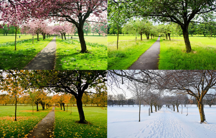 5.We get to experience all of the seasons.