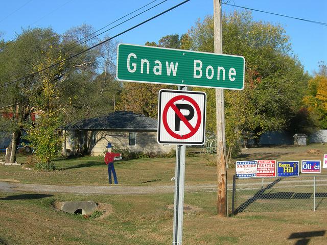 4. Gnaw Bone