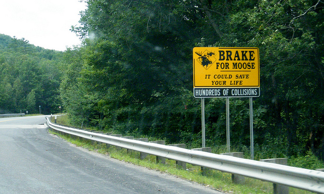 5. You know this sign is no joke.