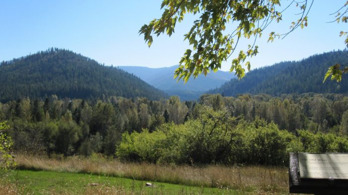 1. White Pine Scenic Byway