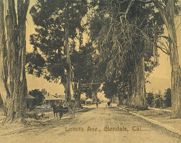 4. Lomita Avenue in Glendale captured in this postcard circa 1910.