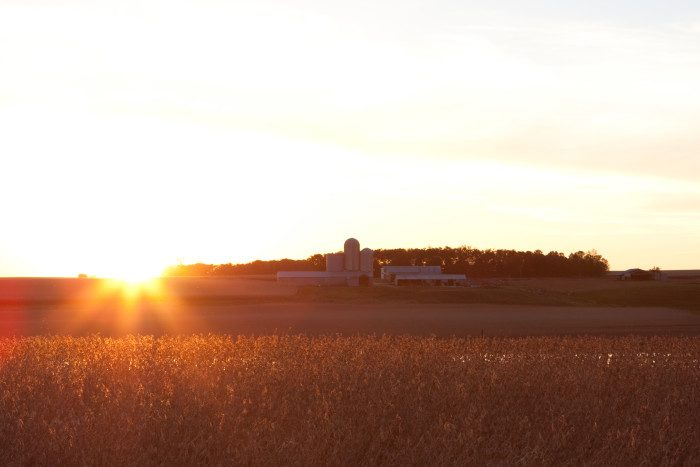 9.  The fields of rural Minnesota make beautiful spots for watching sunsets.