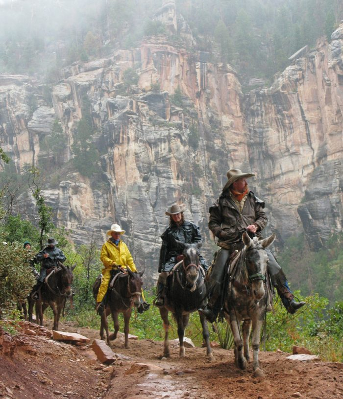 9. Mule trips, other such tours, and other activities tend to be a little less expensive and less congested.