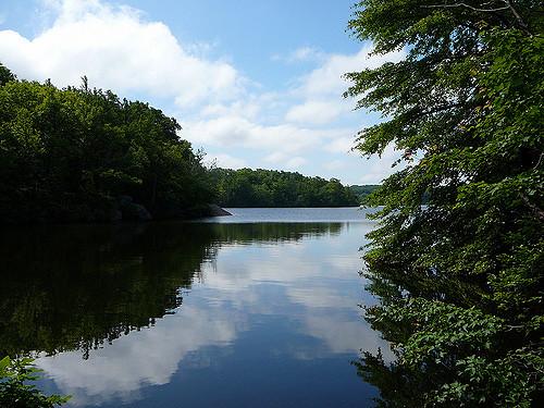 2. Olney Pond, Lincoln