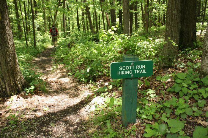 7. Walk a trail
