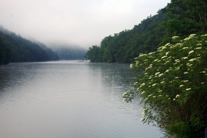 8. Hungry Mother State Park (Marion)