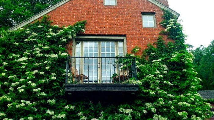 4. Take a stroll at the Hollister House Garden in Washington.