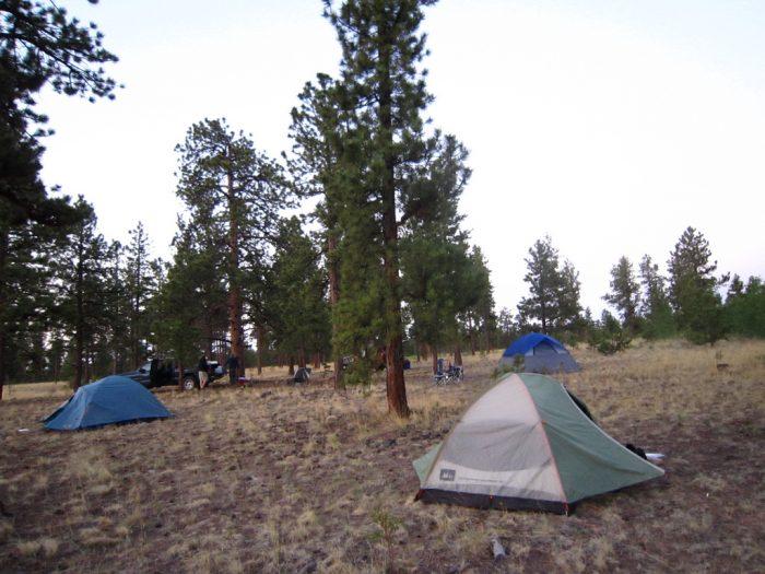 7. The campgrounds around Mount Princeton...
