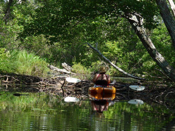 10. Big Pond (Otis Reservoir), Otis