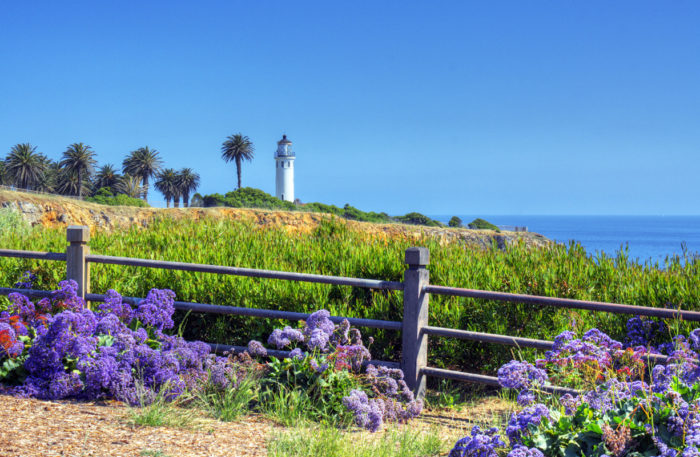 9. This picture-perfect setting can be found at the Point Vicente Lighthouse in Palos Verdes.