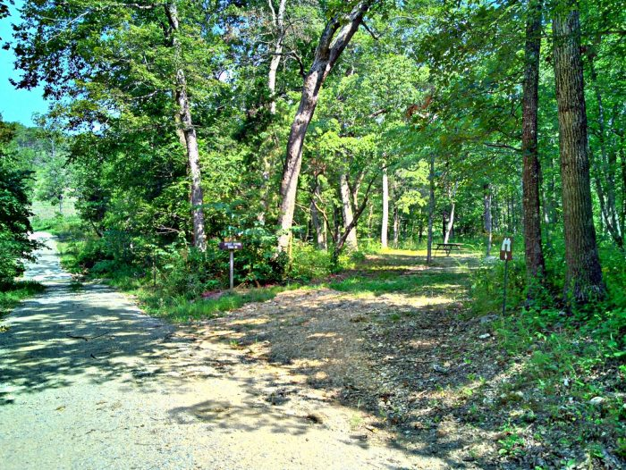 5. Go for a picnic at the Caney Mountain Conservation Area.