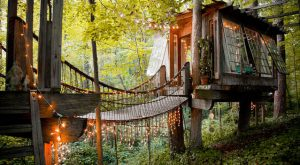 These 15 Incredible Treehouses Around The U.S. Will Simply Blow You Away