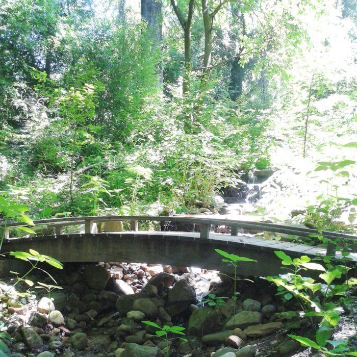 6. Highland Park Trail