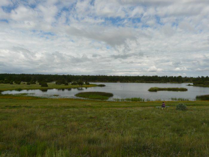 4. Fool Hollow Lake