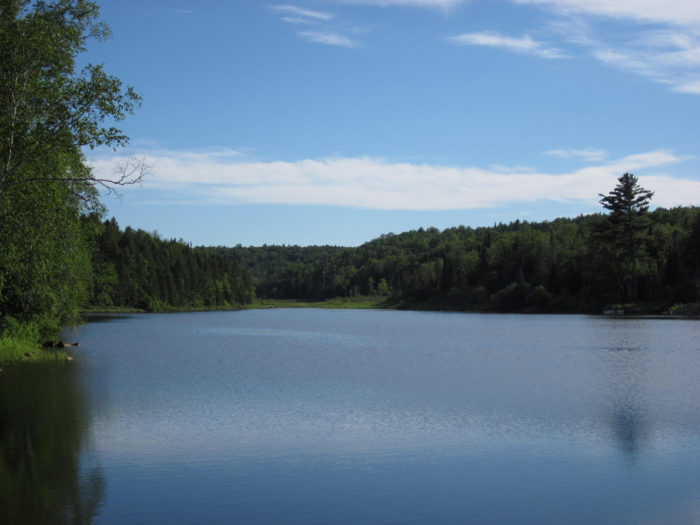 2.  Baker Pond, Brookfield