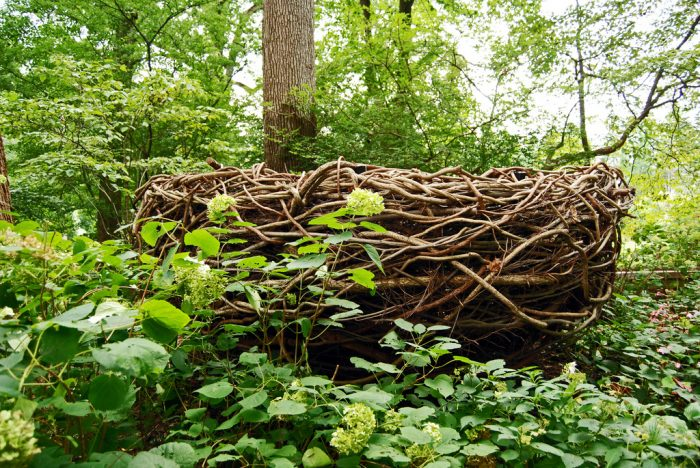 Did you shrink? Feel like a tiny songbird as you enter this HUMONGOUS birds' nest!