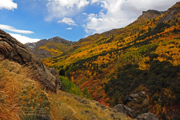 8. The warm autumn colors of Lamoille Canyon have never looked more beautiful.